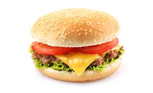 Donner Burger